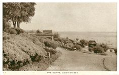 The Cliffs, Leigh-on-Sea, Essex Postcard Leigh On Sea, Island, Painting, Outdoor, Outdoors, Painting Art, Islands, Paintings, Outdoor Games