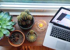 Er blogging vigtigt?
