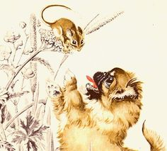 Pekingese Puppy Playing with Field Mouse by Dorothy P Lathrop