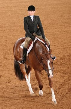 Spring Horse-Training Tip: Learn how to establish rhythm and determine your horse's pace. And don't let the learning stop there! Check out http://americashorsedaily.com/ for more helpful horse information.