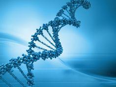 """L'immunità ai virus grazie al DNA """"spazzatura"""""""