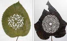 Lorenzo Durán creates incredible works of hand-cut art, using dried leafs, calling his artwork Naturayarte.