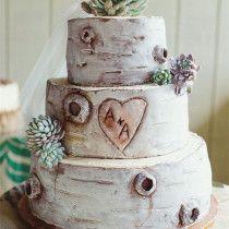 Birch Bark wedding cake with succulent