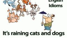 The English idiom, It's raining cats and dogs with an explanation of its meaning. Learning English Online, English Language Learning, Teaching English, English Grammar, Weather Terms, Weather Vocabulary, Spanish English, Learn English, Weather In English