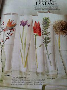 bloemen op rol papier