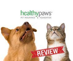 Pet insurance reviews Trusted pet insurance reviews of 2016's most popular plans. Never enroll in a pet insurance plan before reading customer reviews. Vet-Verified reviews. https://www.petinsuranceu.com/pet-insurance-reviews/