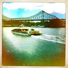CityCat, Bridge, River
