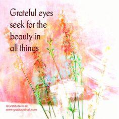 Grateful eyes seek for the beauty in all things. Kristin Granger  #gratitude