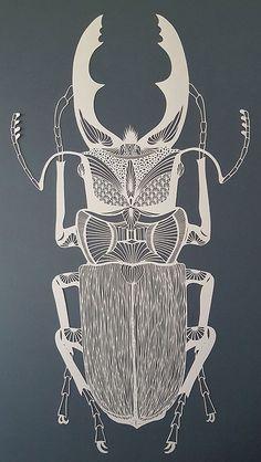 The Crisp Patterns of Pippa Dyrlaga's Paper Art Pippa Dyrlaga, Stag beetle, 2016 © Pippa Dyrlaga. Simple Illustration, Papercut Art, Bug Art, Insect Art, Paper Artwork, Grafik Design, Art Lessons, Stencil, Drawings