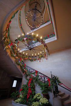Biltmore House staircase decked out for Christmas - in Asheville NC