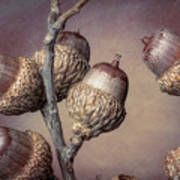 Acorn Branch Art Print Branch Art, Thing 1, Acorn, All Art, Fine Art America, Art Prints, Poster, Art Impressions, Tassel