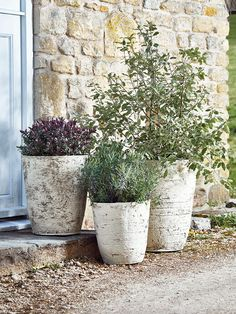 Made from lightweight and weather resistant fibreglass that looks just like silver birch-bark, our textured planter set includes three different sized pots which are ideal for adding style to your outdoor space.