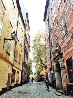 W&D Goes to Scandinavia: A Guide To Stockholm, Sweden | { wit + delight } | Bloglovin'