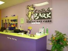 dog daycare reception area - Google Search
