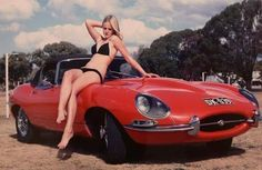 E Type with feline New Jaguar, Jaguar E Type, Jaguar Cars, Car Photos, Car Pictures, British Sports Cars, Power Cars, Car Girls, Hot Cars