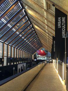 Belgian Pavilion - Martínez Otero Contract Design - Patrick Genard