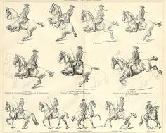 DRESSAGE, REITKUNST ,Equestrian,1894 Original Antique Wood Engraving