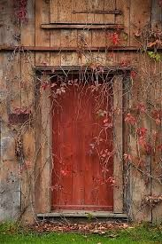 Image result for doors from around the world