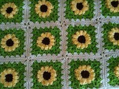 Gerber daisy Afghan_small2. Free pattern