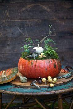 Fall table/ citrouille decorative