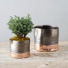 """With an organic shape and eye-catching metallic detail, this banded planter is made from glazed ceramic.- Glazed ceramic- Indoor use only- Drainage hole not included- ImportedSmall: 3.75""""H, 3.25""""D, 4"""" exterior diameter, 3.6"""" interior diameterLarge: 4.8""""H, 4.4""""D, 5.5"""" exterior diameter at mouth, 5.2"""" interior diameter at mouth, 5.25"""" diameter at base"""