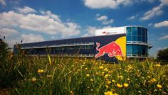 Red Bull Internships in the United States and Middle East