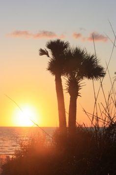 sunrise by marci