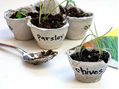 This herb garden is such a cute idea!
