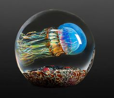 Moon Jellyfish Side Swimmer by Richard Satava: Art Glass Paperweight available at www.artfulhome.com