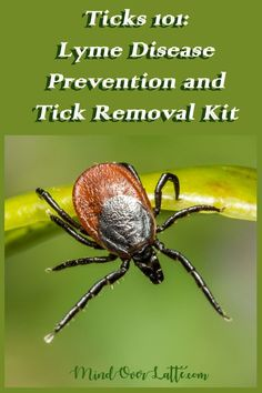 Outdoors lovers beware!  Ticks population is growing by the season and the Lyme disease is on the  rise. Here are a few tips on how to protect yourself and what to do  when you find a tick nested on your body. #ticks #lymedisease #health  #wellness #nature #familyhealth #kidshealth