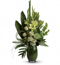 Fena: Certain to garner a lot of attention, this gorgeously green arrangement is a fresh idea for both men and women. Many shades of green display many shades of brilliance.    Green roses, gladioli, carnations, lotus pod, leucadendron, bells of Ireland, green button spray chrysanthemums, ti leaves, fern and grass create a lively forest-like feeling.