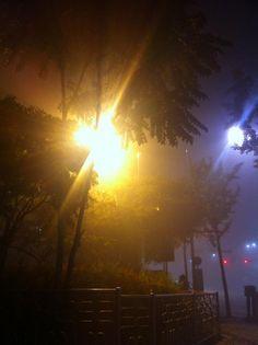 Mist @ 2011.10.15