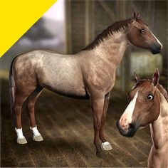 HD Horse Coats - Strawberry Roan by LittleV - The Exchange - Community - The Sims 3