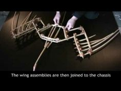 Cedar Wings, Second Version, with Construction footage - YouTube - lovely video of the articulation!
