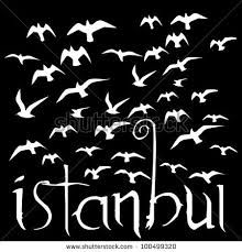 Afbeeldingsresultaat voor istanbul birds