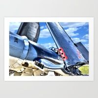 Cool Corsair Art Print