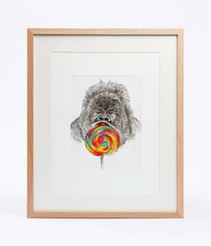 Gentle Inside A Man by Dinda Tegar Jelita. Painting of gorilla licking rainbow lollipop made by watercolor and waterproof pen. The picture has size dimension39cm x 29cm and the frame size is 52cm x 42cm x 3.5cm.  http://www.zocko.com/z/JJjUK