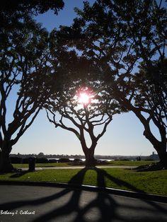 Embarcadero Marina Park, San Diego, CA, by Bethany Cathcart