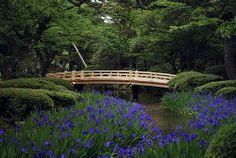 Kenrokuen Garden, Kanazawa, Japan by davidkosmos, via Flickr