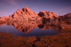 Sunrise, Joshua tree, CA Travel Photographer, Professional Photographer, Lighting Techniques, National Geographic, Travel Photos, Monument Valley, Landscape Photography, Sunrise, Hiking