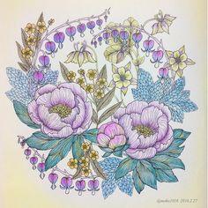 2016.02.27 順番に塗ってるのだけれど、同じ花が続く… #大人の塗り絵#ぬりえ#塗り絵#野の花のぬり絵ブック#coloriage #コロリアージュ…