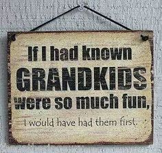 If i had known grandkids were so much fun i would have  had them first