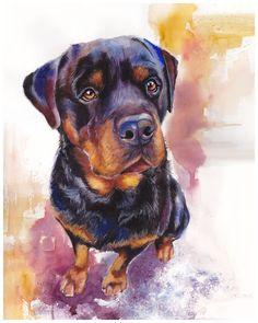 """Rottweiler Watercolor Giclee Fine Art Print 8x10"""" [Watercolor Dog Portrait, Rottweiler Print, Dog Art, Watercolor Art] by AquilaWatercolor on Etsy https://www.etsy.com/listing/187650238/rottweiler-watercolor-giclee-fine-art"""