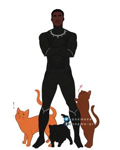 #TChala #BlackPanther #cats