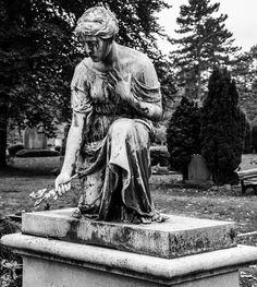 https://flic.kr/p/zQ2XM7 | 2015 Düsseldorf Nordfriedhof-56
