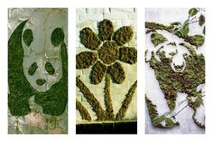 How to make Live DIY Moss Graffiti Gardens to add a touch of artistic flair to walls and transform them into a beautiful live growing green work of art. Moss Graffiti, Growing Greens, Deco, Mousse, Creations, Wall, Nature, Artist, Artwork