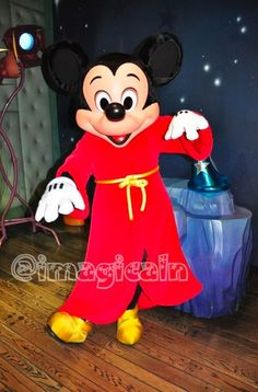 DLR2012★2/29:Mickey's House and Meet Mickey|imagical days 〜Disney Parks Travel Logs〜