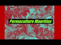 Come, discover and support this innovative permaculture project in Mauritius! After a visit to the garden, where you will be able to learn more about the per. Mauritius, Permaculture, Agriculture, Make It Yourself, Tropical Garden