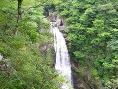 宮城県仙台市太白区秋保町(あきうまち)にある滝で、国の名勝に指定されており、日本の滝百選の1つにも数えられています。栃木県の華厳の滝(けごんのたき)、茨城県の袋田の滝(ふくろだのたき)、和歌山県の那智の滝などと並び、日本を代表する名瀑(めいばく)です。  幅6m、落差55mの大滝で、秋には紅葉も楽しめます。また、遊歩道を降りて滝つぼまで行くことができます。轟音轟かせ流れる滝のしぶきを浴びるのもいいですね。 ■ 基本情報 ・名称: 秋保大滝 ・住所: 宮城県仙台市太白区秋保町馬場字大滝 ・アクセス: バス…①JR仙台駅西口バスプールから宮城交通バス秋保大滝行きで1時間2分、終点下車すぐ(土・日曜のみ) ・電話番号: 022-398-2323(秋保温泉郷観光案内所) ・公式サイトURL: http://akiusato.jp