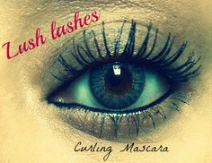 This curling mascara is amazing! Beauty Box is only $99!